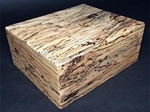 Spalted Maple - Desktop Humidor